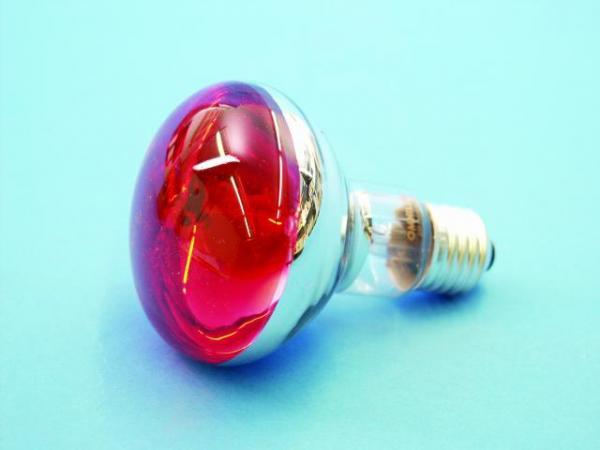 OMNILUX R80 230V/60W E-27 Red, Punainen, Voit käyttää normaalin hehkulampun tilalla!