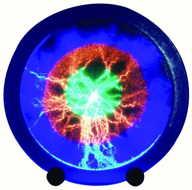 EUROLITE Plasma Disc 12
