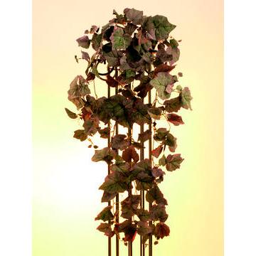 EUROPALMS 100cm Wine harvest-bush nature