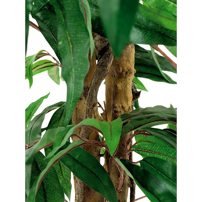 EUROPALMS 240cm Mangopuu. Mango tree. Successful imitation of a mango tree with a tropical look