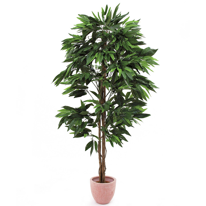 EUROPALMS 180cm Viidakko Mangopuu. Jungle tree Mango. Successful imitation of a mango tree with a tropical look