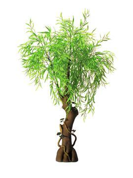 EUROPALMS 200cm Itkupaju. Weeping Willow, naturally falls into place, the