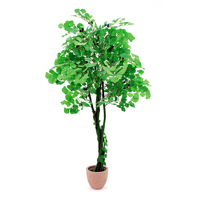 EUROPALMS 210cm Neidonhiuspuu hedelmillä. Ginkgo Forest Tree, lifelike ginkgo Forest Tree for classy decortions