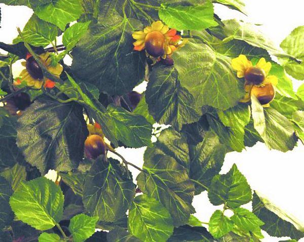 DECO 150cm Hazelnut Forest Tree, Hasselpähkinäpensas pähkinöillä
