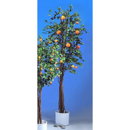 EUROPALMS 180cm Appelsiinipuu hedelmill�, discoland.fi