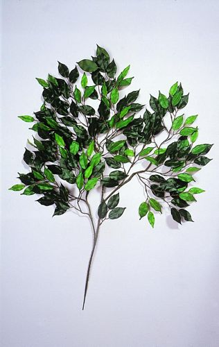 EUROPALMS Ficus spray 183 leaves/ 1pcs, , discoland.fi