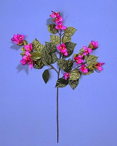 DECO TUOTE POISTUNUT....Bougainvillea Spray pink, 3 branches