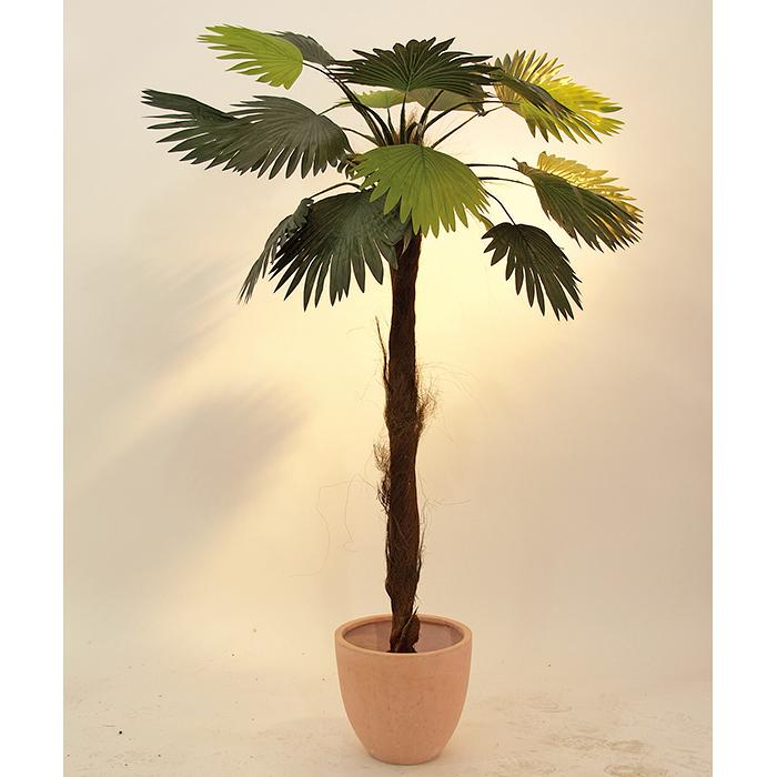 EUROPALMS LOPPU!!110cm Viuhkapalmu kookosparkkikuiturungolla, aidon oloinen tekokasvi. Luonnossa tälläinen palmu saattaa kasvaa jopa 20 metriseksi.