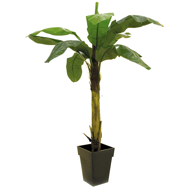 EUROPALMS 220cm Banaanipuu runko on pä�, discoland.fi
