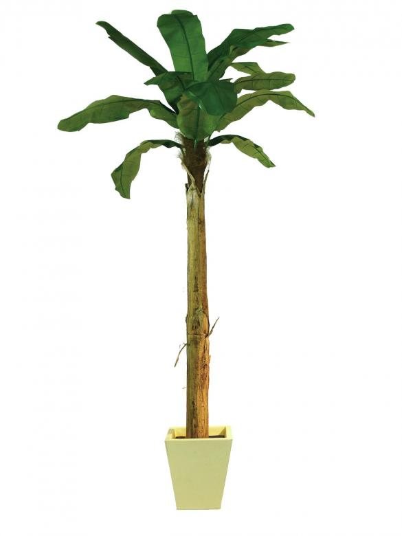 EUROPALMS 270cm Banaanipuu Banana tree Natural appearing banana tree with trunk covered by natural material.