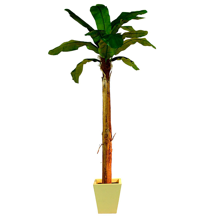 EUROPALMS 330cm Banaanipuu. Banana tree. Natural appearing banana tree with trunk covered by natural material