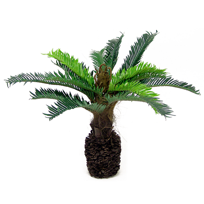 EUROPALMS LOPPU!!50cm Käpypalmu. Cycas palm. Natural appearing Cycus palm covered with palm fiber material