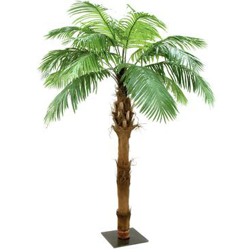 EUROPALMS 210cm Kanariantaatelipalmu, 21 lehvää. Phoenix Canariensis palm, trunk covered with coconut bark. Perfectly for mobile use, because of quick assembly and disassembly