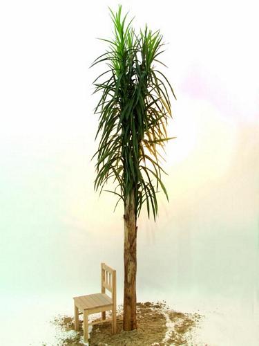 DECO 370cm Date palm, discoland.fi
