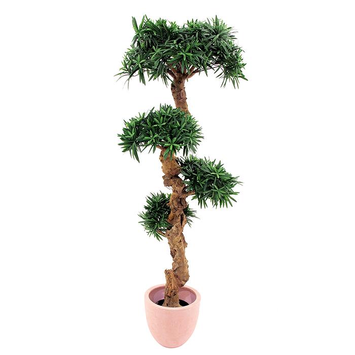 EUROPALMS 120cm Bonsaipuu todella upea 4, discoland.fi