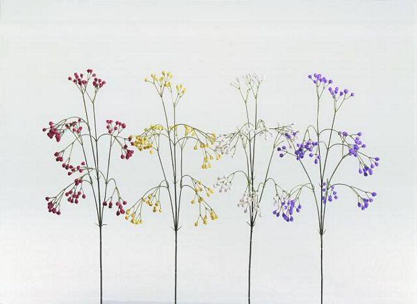 EUROPALMS Everlasting Poppy Spray white,, discoland.fi
