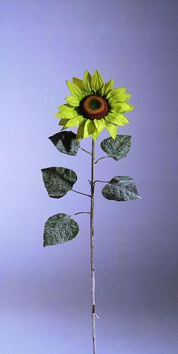 DECO POISTUNUT TUOTE.... 120cm Sunflower, discoland.fi