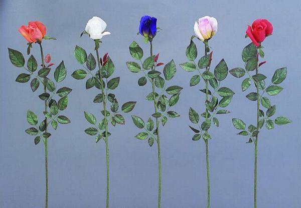 EUROPALMS 80cm Long-stemmed rosebud blue, discoland.fi