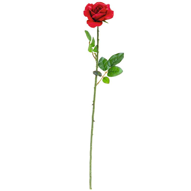 EUROPALMS 65cm klassinen avonainen ruusu, discoland.fi