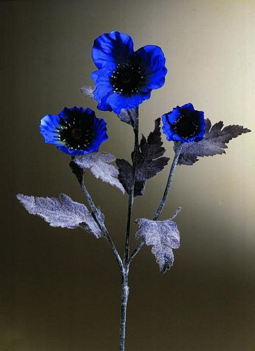 EUROPALMS 60cm Unikko sininen. Poppy Velvet, blue. Poppy Velvet, perfect for bouquets