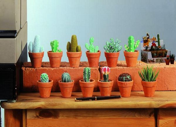 DECO Poistunut tuote.................................12kpl Mini Cactusta, Mini cactus mix  12pcs., incl. sales box