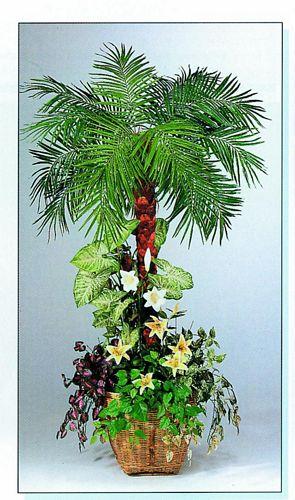 EUROPALMS 190cm Pheonix-palmtree arrange, discoland.fi