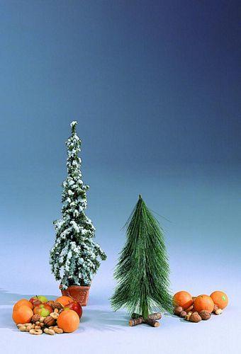 EUROPALMS 66cm Fir Tree iced up white, discoland.fi