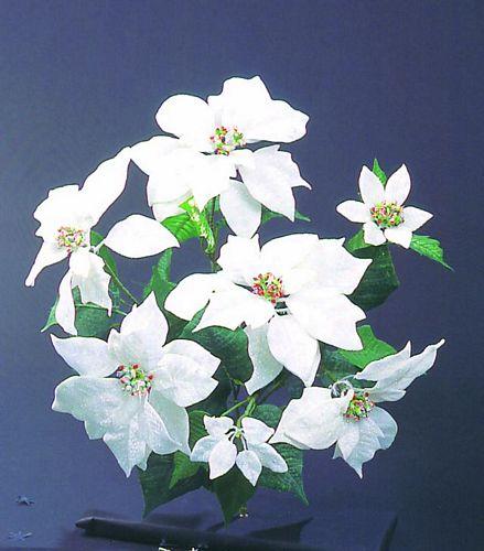 DECO 50cm Poinsettiastar white with glit, discoland.fi