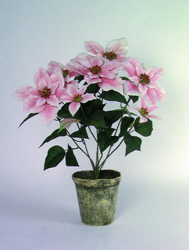 DECO POISTUNUT TUOTE...... 50cm Poinsettia 1+4+2flowers potted rose
