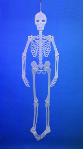 EUROPALMS LOPPU! Halloween Skeleton flat, discoland.fi