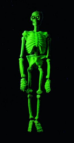 EUROPALMS Halloween Skeleton 3D UV-Active 130cm