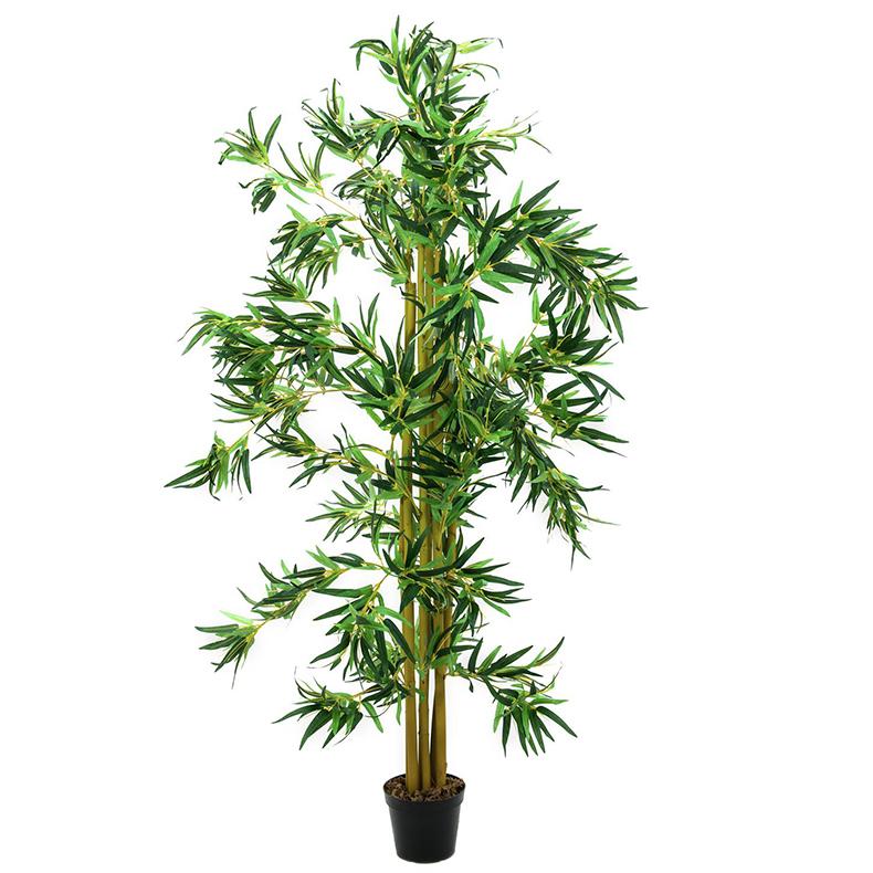 EUROPALMS 210cm Bambupuu usealla rungoll, discoland.fi