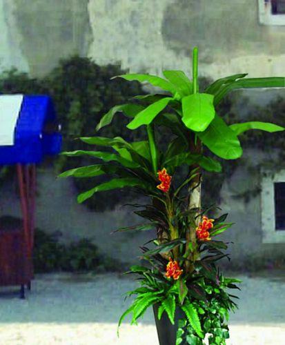EUROPALMS 270cm Banana tree arrangement II Set