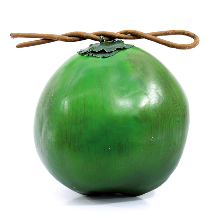 EUROPALMS Kookospähkinä, vihreä. Youn, discoland.fi