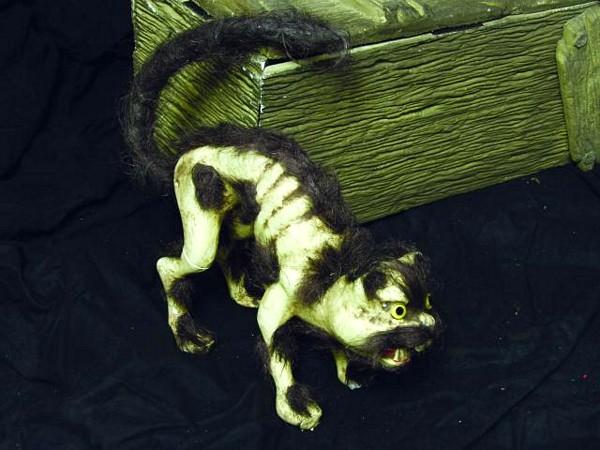 DECO POISTUNUT TUOTE..Cat