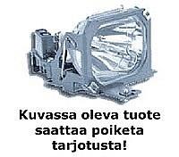 CANON LV-X6 projektorilamppu originaali , discoland.fi