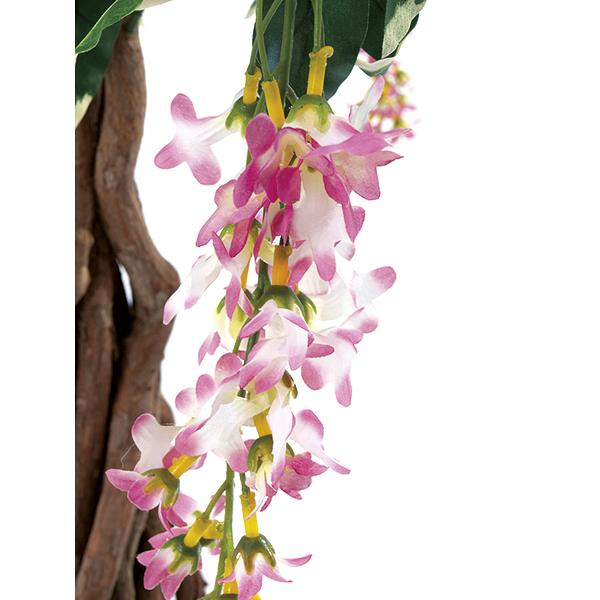 EUROPALMS 190cm Japaninsinisade, kukka-bonsai risteytys kierteisellä lianirungolla on todella tyylikäs keväinen ja kesäinen kukkapuu.