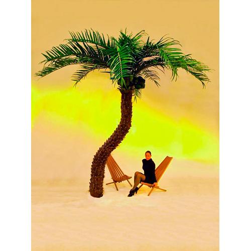 EUROPALMS 370cm Kookospalmu taivutetulla rungolla, näyttävä ja aivan huippulaatua. Kookospalmu tunnetaan hedelmästään kookospähkinästä, se kasvaa jopa 40 metrin pituiseksi. Kookospalmun runko on haaraton, ja lehdet lähtevät tähtimäisesti yhdestä pisteestä. Palmu on kotoisin Kaakkois-Aasian rannikoilta Malesia, Indonesia, Filippiinit ja Melanesia. Uskotaan että sen luonnonmuodot ovat levinneet merivirtojen mukana jo esihistoriallisena aikana. Nykyisin sitä viljellään laajasti tropiikissa ja subtropiikissa. Kookospalmu on mielenkiintoinen ja tavallisuudesta poikkeava katseenvangitsija joko yksittäiskasvina tai ryhmänä.