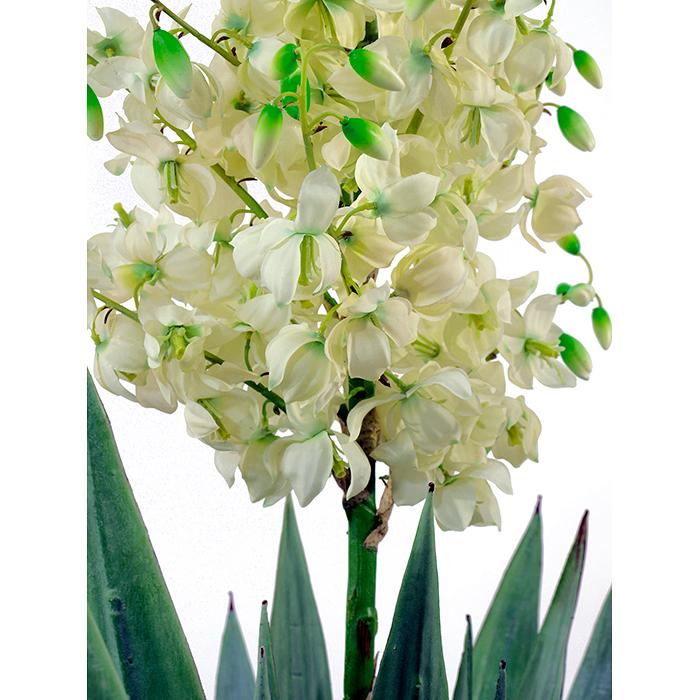 EUROPALMS 222cm Jukkapalmu kukilla on aidon oloinen tyylikkäästi kaarevalla rungolla, aito Eteläamerikkalainen palmu on nahkealehtinen kasvi, jota käytetään paljon huonekasvina, luonnossa jukkapalmu voi kasvaa kymmenmetriseksi