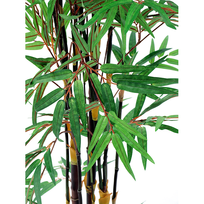 EUROPALMS 182cm Bambupuu mustilla tekorungoilla. Bamboo tree black trunk. Superior bamboo tree with dark trunks
