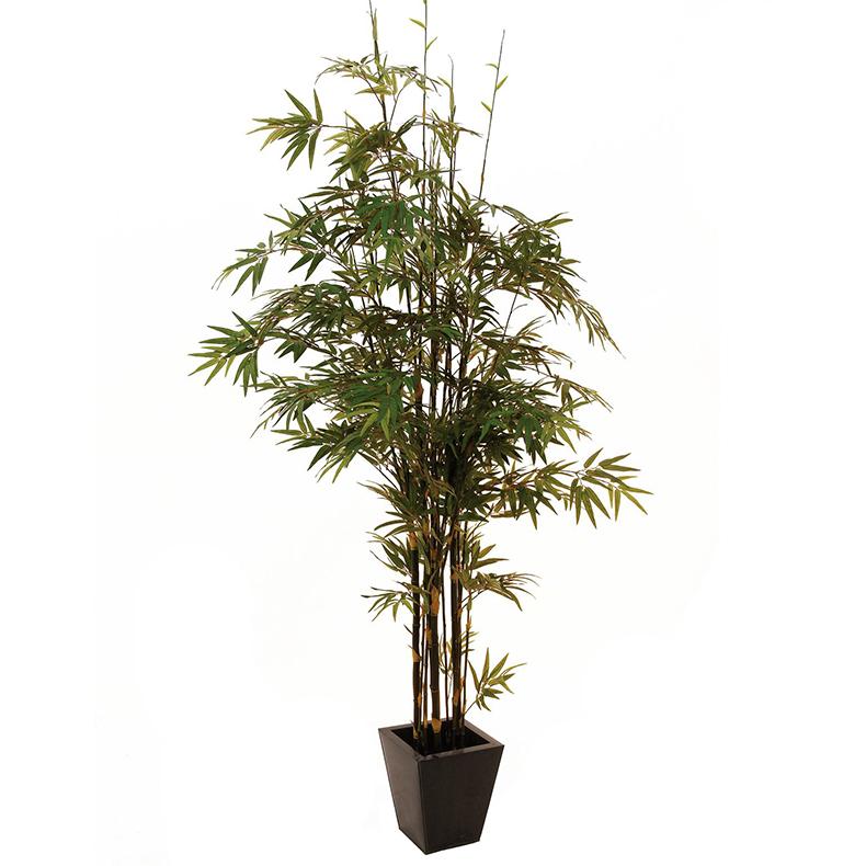 EUROPALMS 240cm Bambupuu mustilla tekoru, discoland.fi