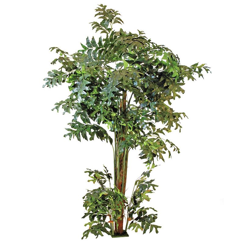 EUROPALMS 305cm Eväpalmu. Fishtail palm, discoland.fi