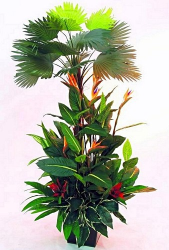 EUROPALMS 220cm Casino Royale Arrangement Set