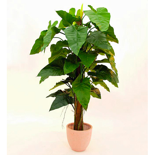 EUROPALMS 150cm Sademetsävehka. Rainforest philodendron. Realistic and incredibly voluminous leafage