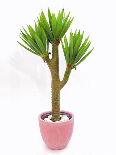 EUROPALMS 105cm Yucca Palm bush, Jukkapalmu UUSI malli