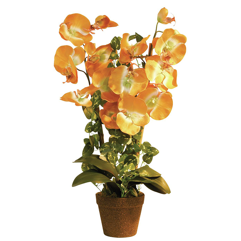 EUROPALMS 57cm Orkidea väri oranssi, er, discoland.fi