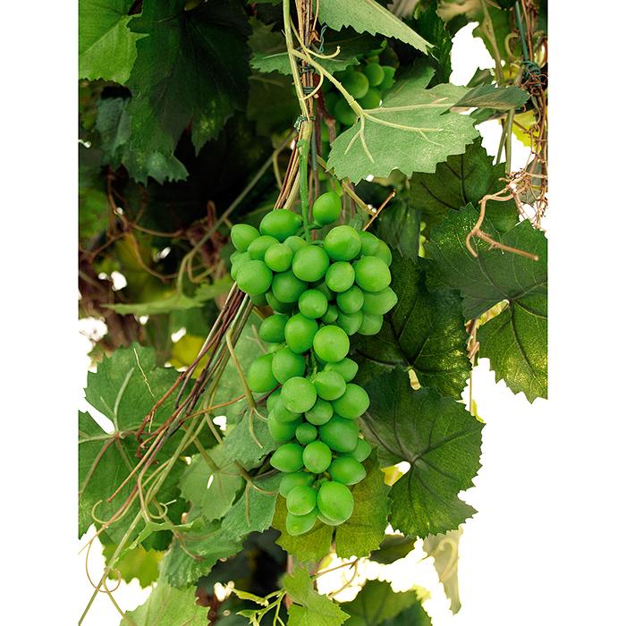 EUROPALMS 180cm Viinipensas viinimarjoilla. Aivan ideaali viinifestareille ja ravintolan sisustukseen.