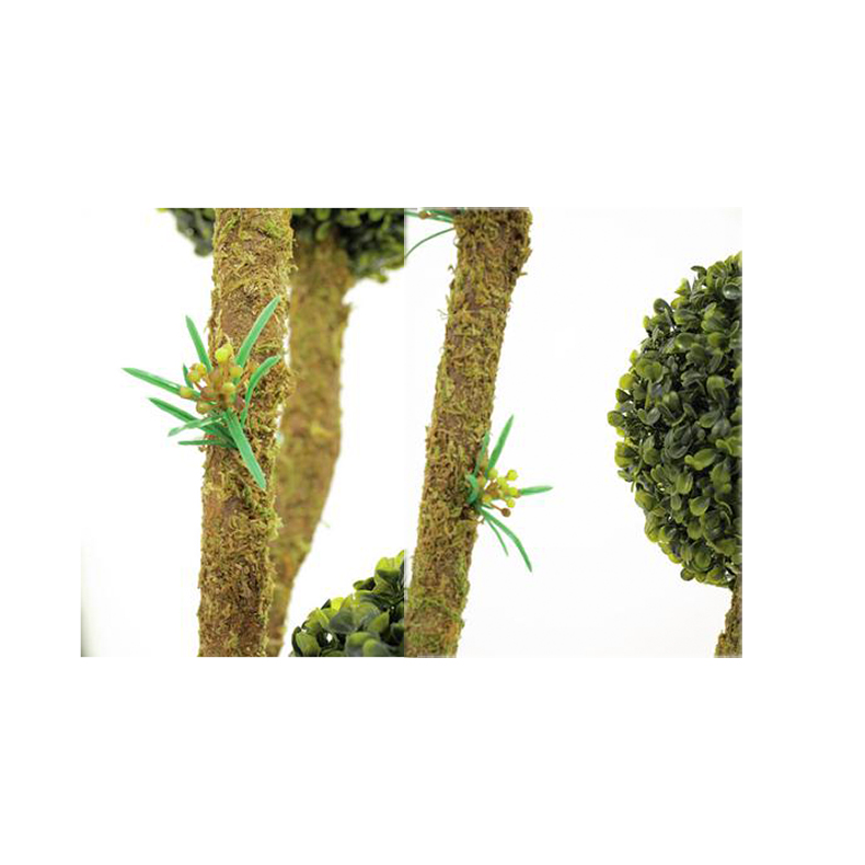 EUROPALMS 163cm Puksipuu kuudella pallolatvalla, erittäin tyylikäs, tekokasvien korkeinta laatua, aidot puksipuut eli koiranpensaat on noin 70 lajia käsittävä suku puksipuukasvien heimossa. Ne ovat ainavihreitä pensaita tai pieniä puita. Isopuksipuu voi luonnossa kasvaa 5–10 metriä korkeaksi puuksi, mutta viljeltynä se pidetään leikkaamalla matalana pensaana, pensasaitana tai muotopuuna. Lajeja kasvaa luonnonvaraisena Euroopan länsi- ja eteläosissa, Aasian lounais-, etelä- ja itäosissa, Afrikassa, Etelä-Amerikan pohjoisimmassa osassa, Keski-Amerikassa ja Meksikossa. Suurin osa lajeista kasvaa trooppisilla tai subtrooppisilla alueilla.