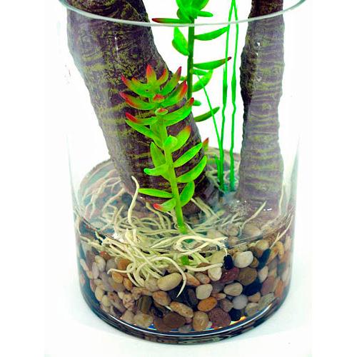 EUROPALMS 80cm Vehka lasimaljassa. Pothos in decorative glass vase