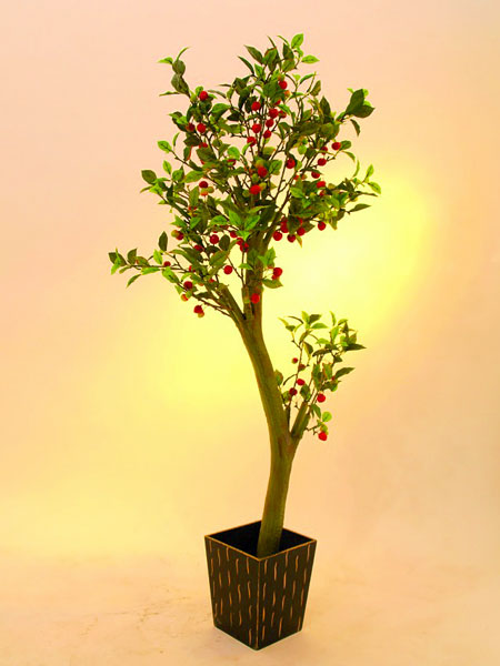 EUROPALMS 185cm Mini cherry tree with ce, discoland.fi